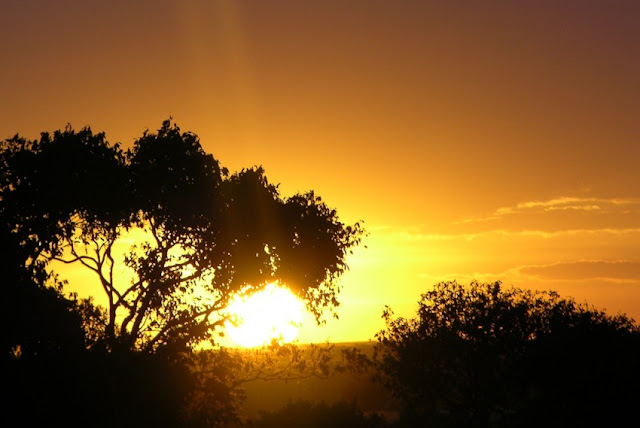 Sunset in kenya