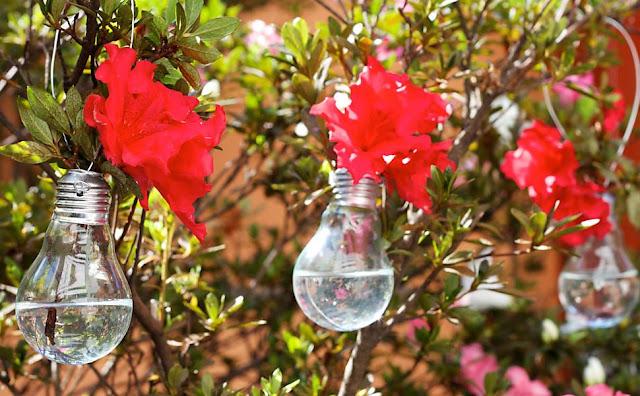 fim das lâmpadas incandescentes, reciclagem de lâmpadas incandescentes, lâmpadas incandescentes não serão mais fabricadas, vasinho de flores com lâmpadas, decoração, ideias de decoração, decor, reciclagem, sustentabilidade, blog camila andrade, blog de moda em ribeirão preto, fashion blogger em ribeirão preto
