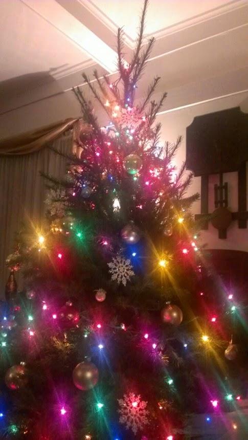 christmas tree 2014 5