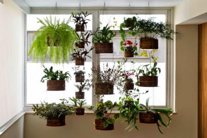 jardim vertical na sala : jardim vertical na sala:Dica de Decoração: Jardim Vertical