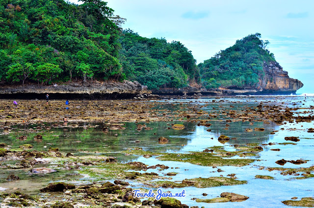 batu karang dari clungup menuju pantai Gatra