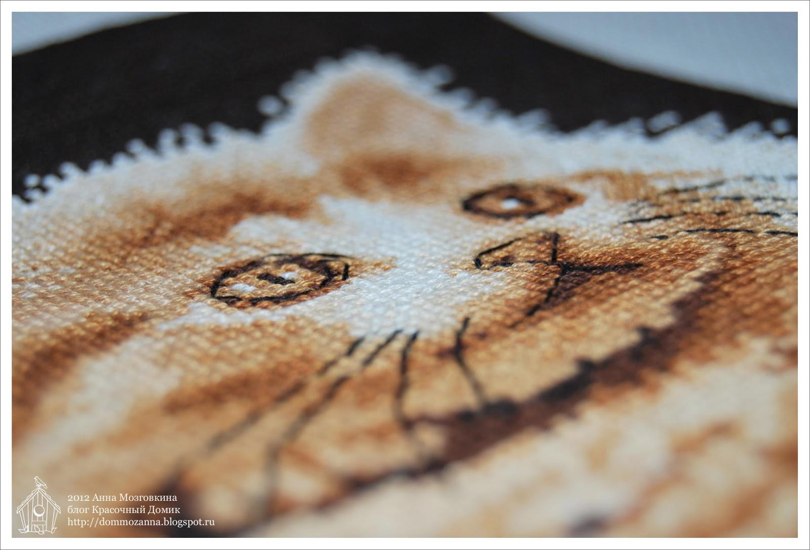 DMC котята вышивка