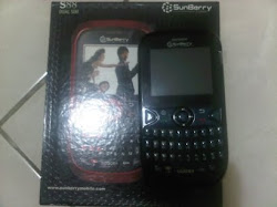 Sunberry S88