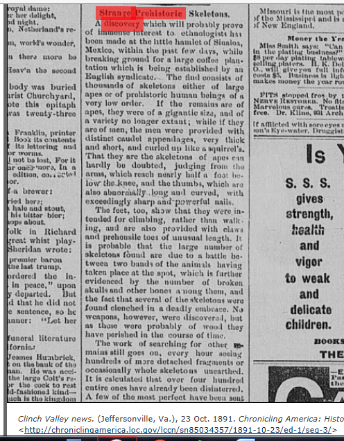 1891.10.23 - Clinch Valley News