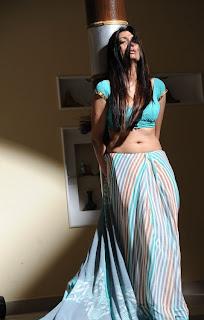Surabhi South Indian Actress in Light Blue Saree Blouse