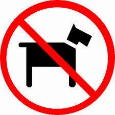 icona anti cane