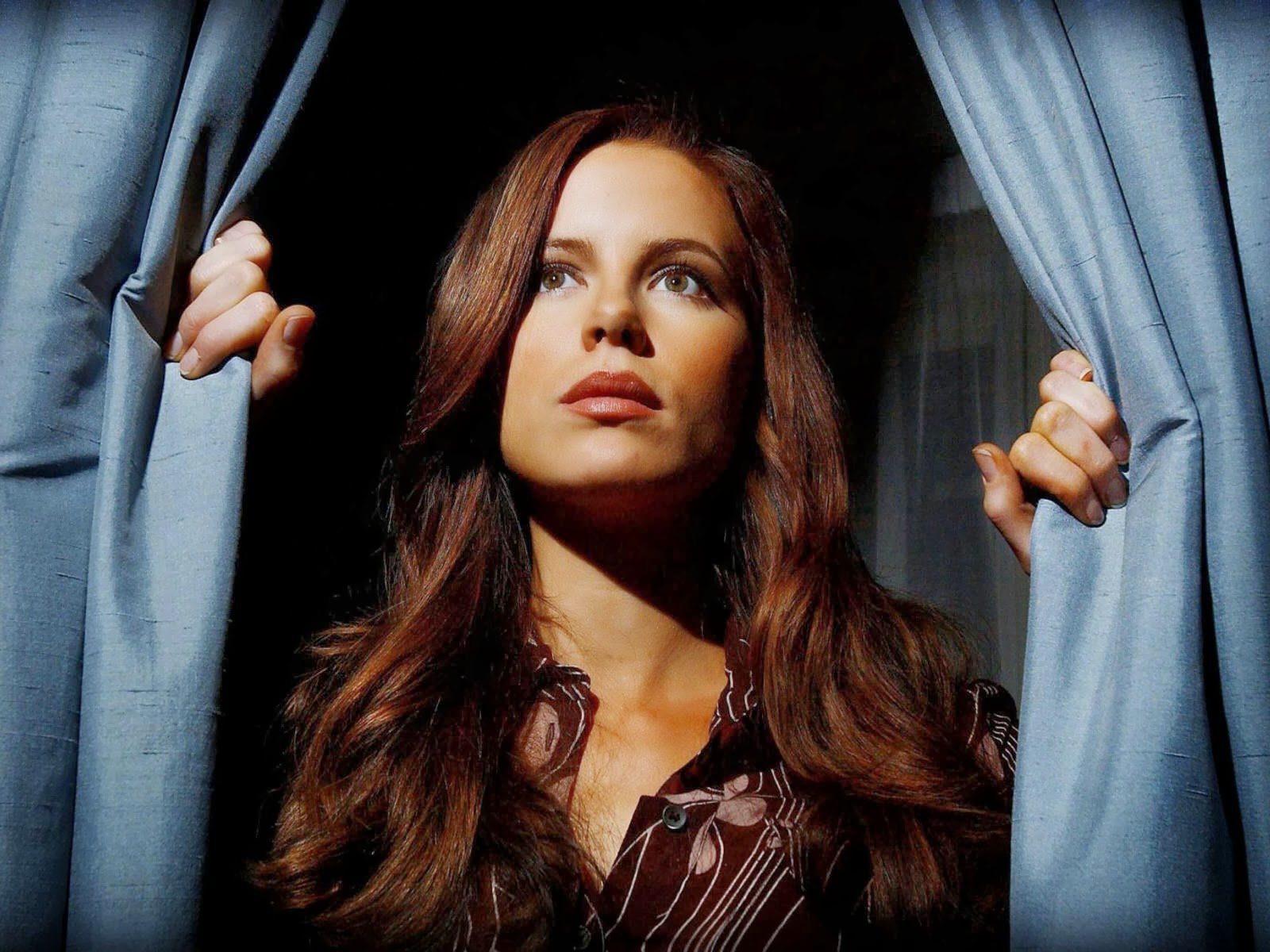 hd animals kate beckinsale new wallpapers
