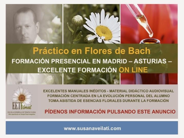 PRÁCTICO EN FLORES DE BACH. Presenciales y ON LINE