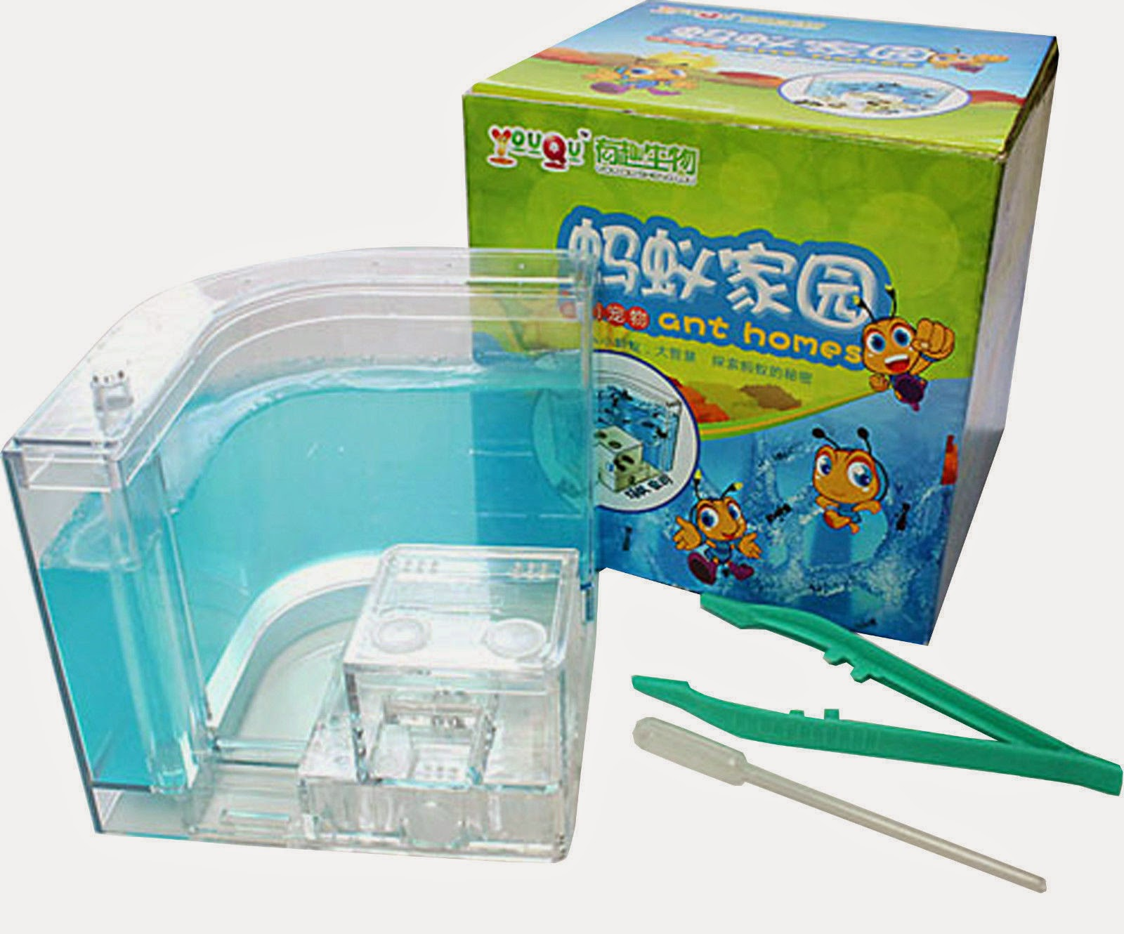 Ant Farm Gel Maze 3D Educational Nursery Live Feeding System Ant Novelty Habitat