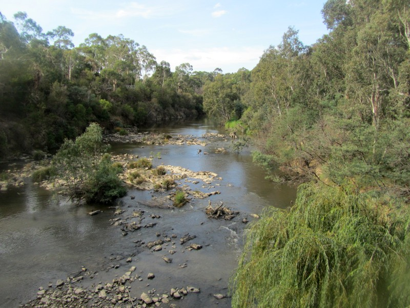 Yarra River - Lower Plenty