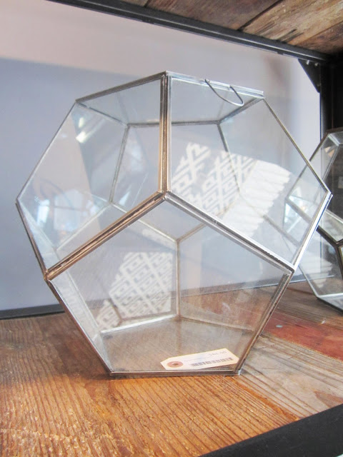 Dodecahedron terrarium