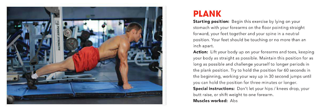 Core Plank Exercises