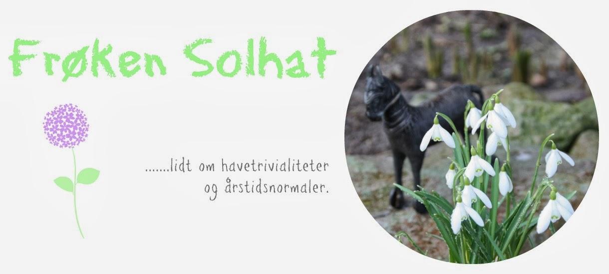 Frøken Solhat