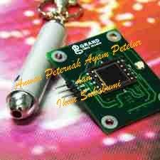 Laser Pointer Sensor - Anwar Peternak
