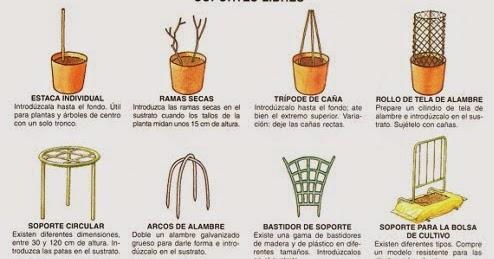 Jardineria de interior y arreglos florales elementos y for Elementos de jardineria