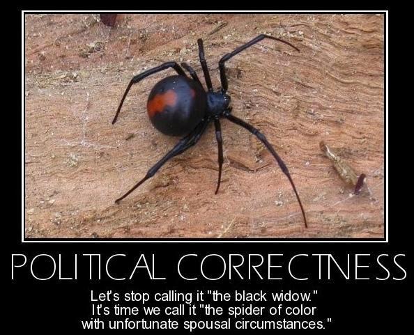 Politically Correct Quotes Political Correctness