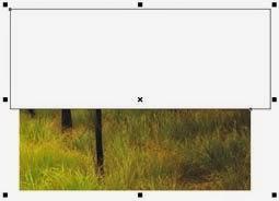 Cara Memotong Objek Gambar di CorelDraw