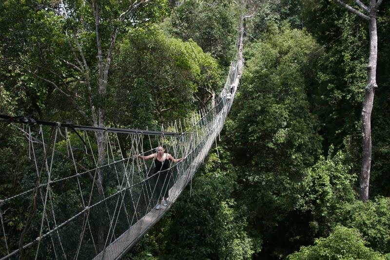Taman-Negara-Malaysia