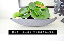 DIY - Terrarium