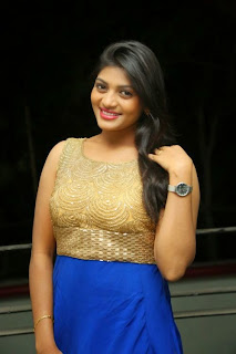 Soumya Latest Pictures in Long Dress at Lion Movie Success Meet ~ Celebs Next