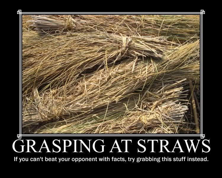 Grasping+at+Straws.jpg