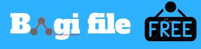Bagi File