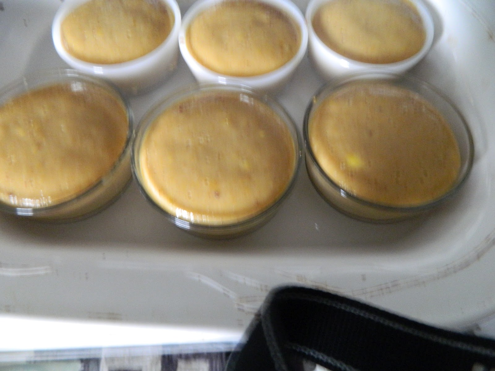 "Island Pepperpot: ""Mango Madness"" Mango Flan with Coconut Rum Sauce"