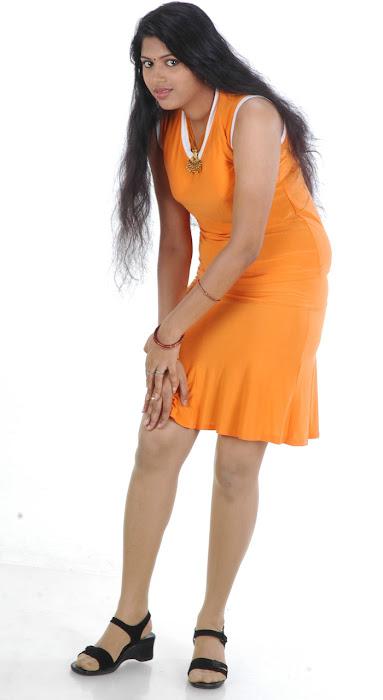 spicy movie aridharam sangeetha actress pics