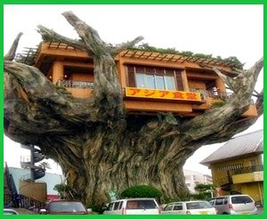 Desain rumah unik dan aneh di dunia