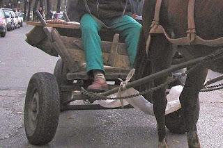 каруца с кон