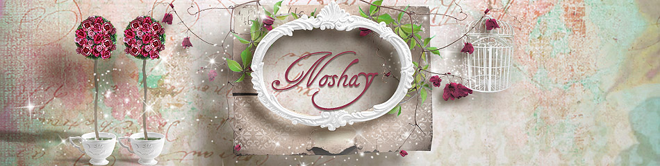 Noshay