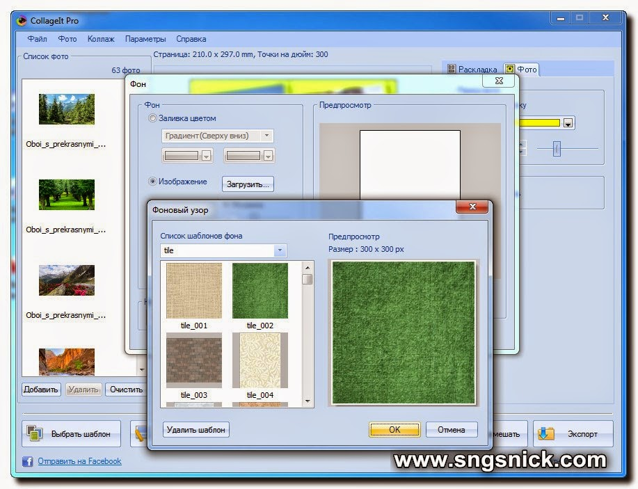 CollageIt Pro 1.9.5.3560. Фон из изображения