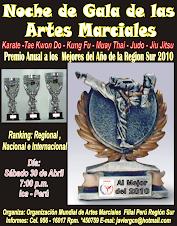 Noche de Gala de las Artes Marciales OMAM