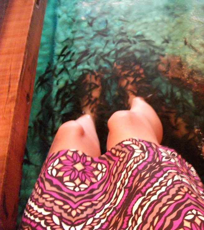 Mumbai candid review orchids fish foot spa for Fish foot spa