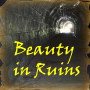 Beauty in Ruins