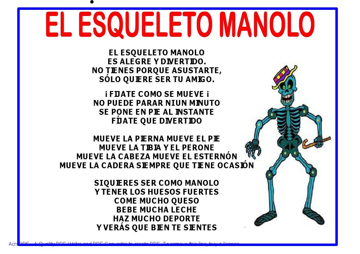 Fichas Para Trabajar El Esqueleto Humano En El Nivel