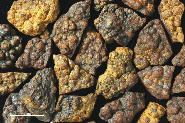 A collection of specimens of iron ore from a vein at the east end of Loch Monar, Ross and Cromarty, showing a distinctive botryoidal form.