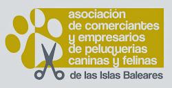 Peluquería canina asociada a la APCFIB