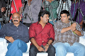 33 Prema Kathalu Audio launch photos-thumbnail-15