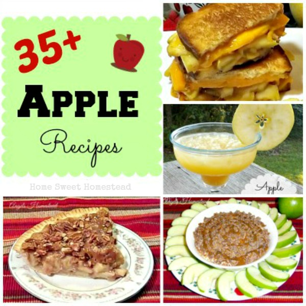 35+ Apple Recipe Roundup