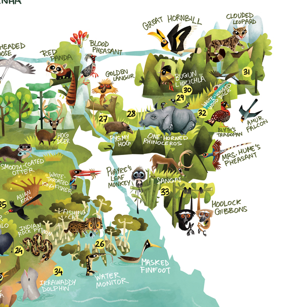 Green Humour The Wildlife Map of India