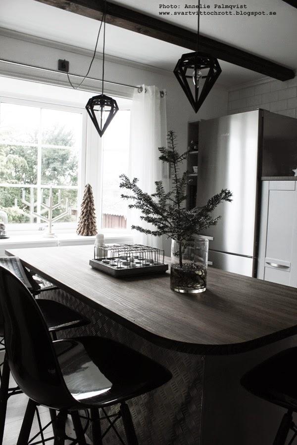 rumsgran, granar, gran i vatten utan jord, synliga rötter i vas, rötterna, jultips, julen, 2014, industriellt kök, industristil, köksö, bänkskiva, bänkskivor, köket, kökets, köken, kökens, stumpastake,