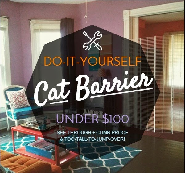 The Lovely Side: DIY Cat Barrier for Under $100 (See-Through ...