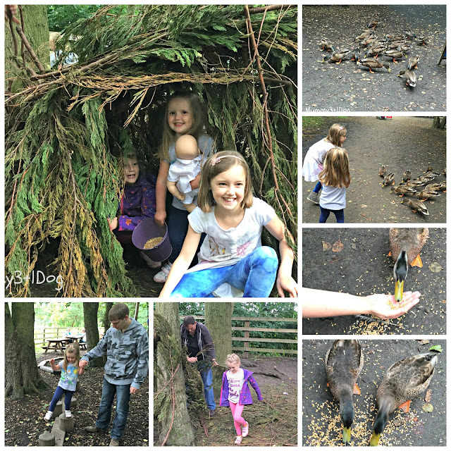 Den Building, feeding ducks and playing