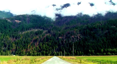 A straight country road leads to the forest and mountain