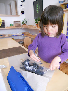 importance of cultural in montessori Montessori scope and sequence: geography  geography is important both as a necessary conceptual framework and spatial orientation, and as a bridge to the development of the child's understanding and appreciation of the story of humankind and nature as in other areas of the montessori curriculum, the children first experience the big picture, th.