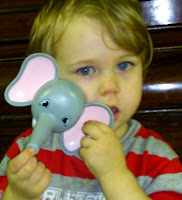 Ava the Elephant