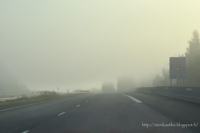 brume road, sumuinen maatie