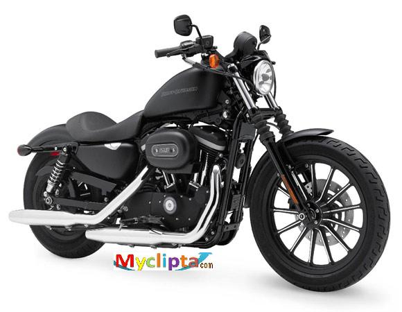 Harley Davidson Latest Sportster-Iron 883 models