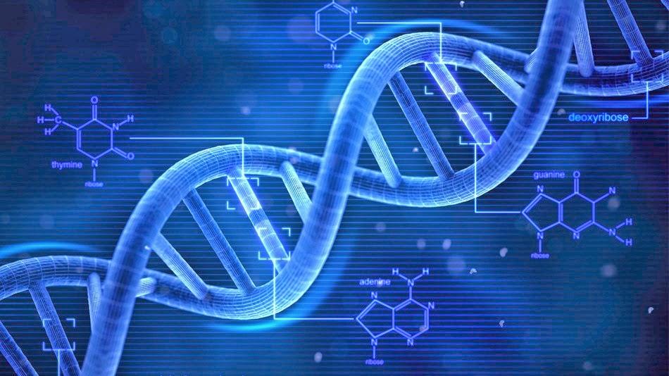 Apa itu Tes DNA ?